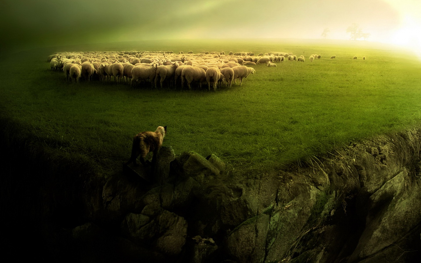 Take a look at your life and ask yourself the following question: are you a sheep following the herd or a lonely wolf? Are you ready to find out?!