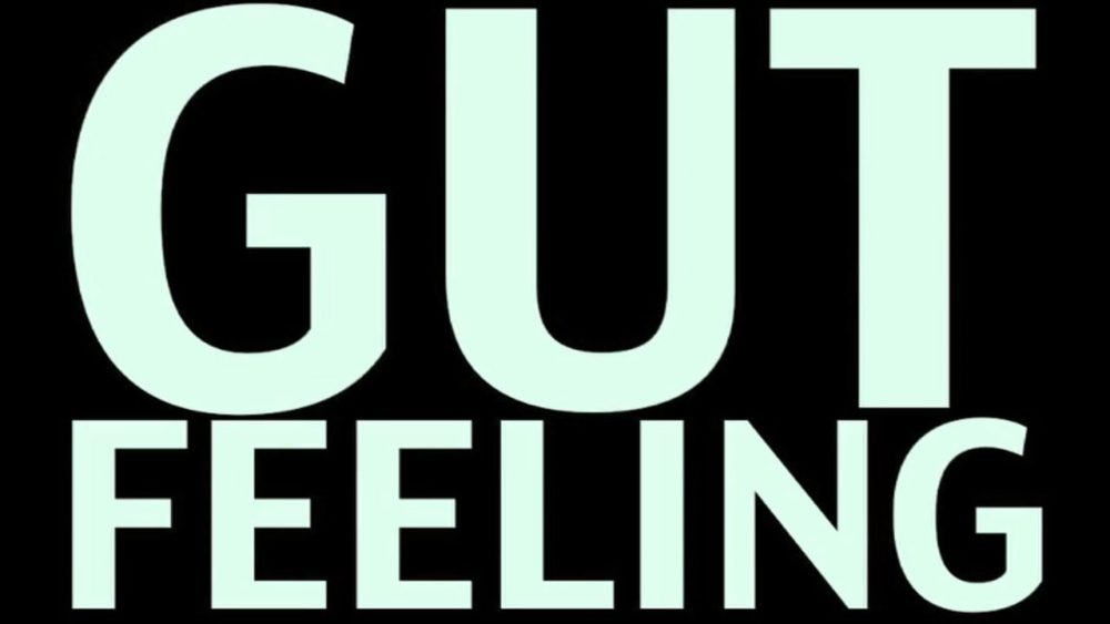 Have you ever followed your gut feeling? Most people are mostly doing the opposite of what they're supposed to do. Or they do what others tell them to do.